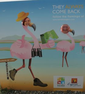 Pink flamingos Aileen Eglington (AE Consulting/Cyprus Tourism Organisation) and Paul Nolan (APG Ireland/Cobalt Air).
