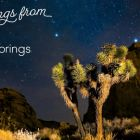 Visit Greater Palm Springs by night