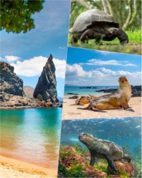 Celebrity Cruises announced 2023 Galapagos Islands sailings - perfect for those who plan a holiday that's on every world traveller's 'must see' list
