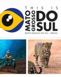The Embassy of Brazil in Ireland and the State of Mato Grosso do Sul are pleased to invite you to attend a very special destination webinar!