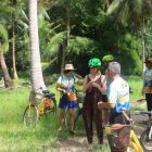 A cycle through the jungle - intrepid adventurers!
