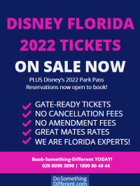 DoSomethingDifferent.com Disney Florida 2022 tickets on sale